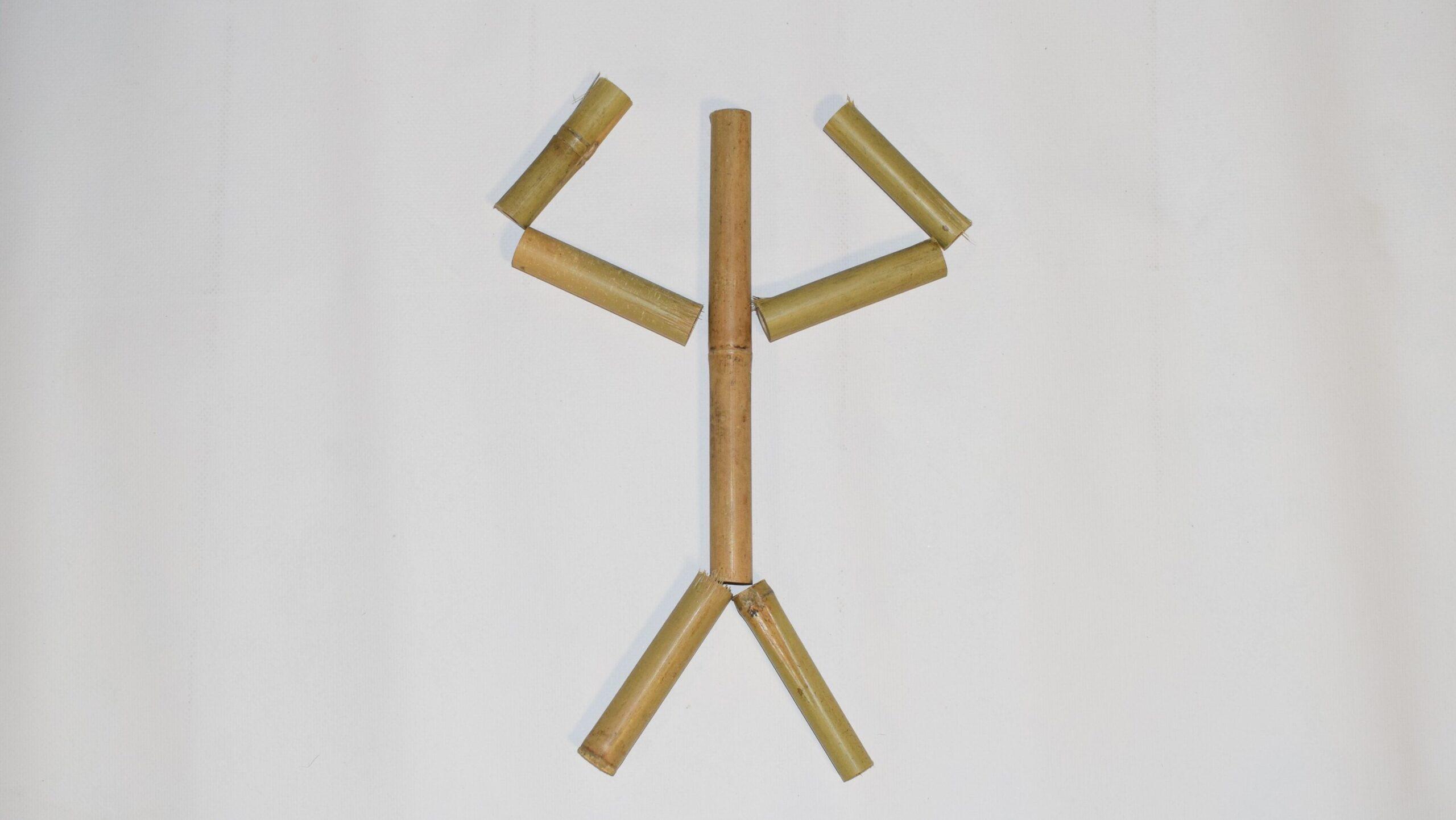 Sterk bamboe weetjes