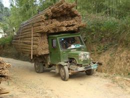 Bamboe vervoeren