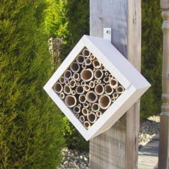 Bijenhotel van bamboestokken